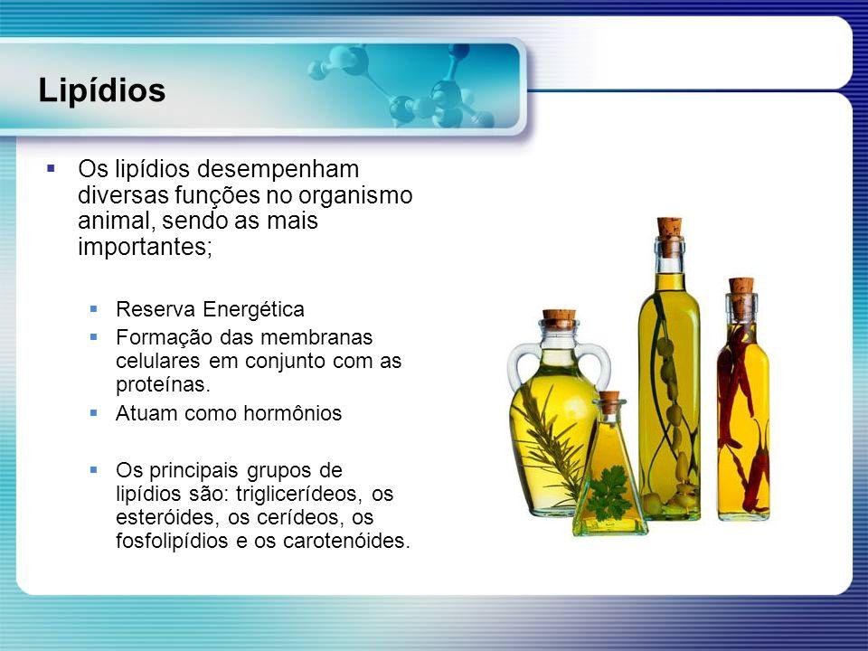 Lipídios Os lipídios desempenham diversas funções no organismo animal, sendo as mais importantes; Reserva Energética Formação das membranas celulares