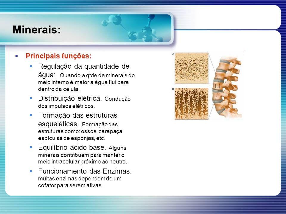 Minerais: Principais funções: Principais funções: Regulação da quantidade de água: Quando a qtde de minerais do meio interno é maior a água flui para