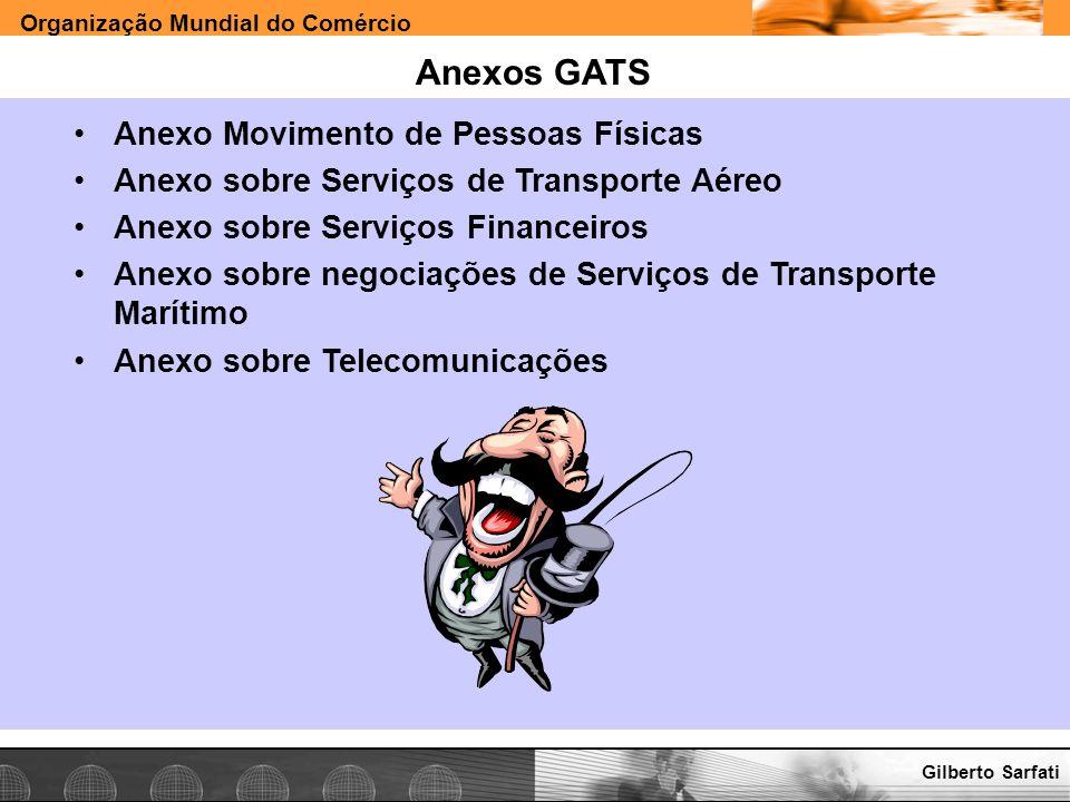 Organização Mundial do Comércio www.e-deliver.com.brGilberto Sarfati Anexos GATS Anexo Movimento de Pessoas Físicas Anexo sobre Serviços de Transporte