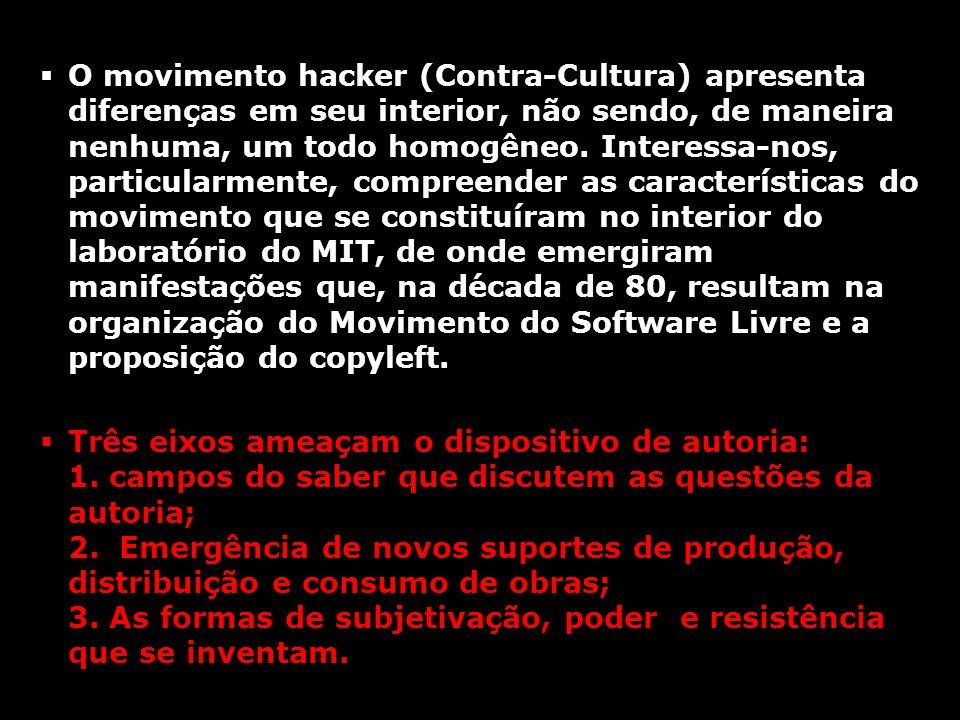 O movimento hacker (Contra-Cultura) apresenta diferenças em seu interior, não sendo, de maneira nenhuma, um todo homogêneo. Interessa-nos, particularm
