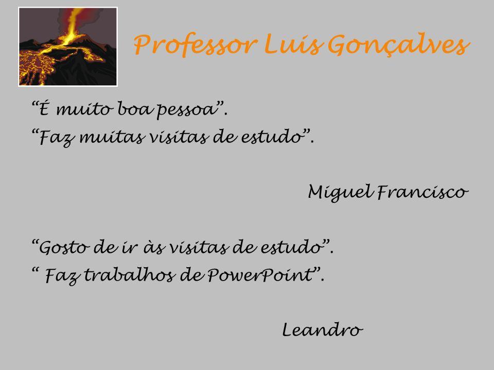 Professor Luis Gonçalves É muito boa pessoa. Faz muitas visitas de estudo. Miguel Francisco Gosto de ir às visitas de estudo. Faz trabalhos de PowerPo
