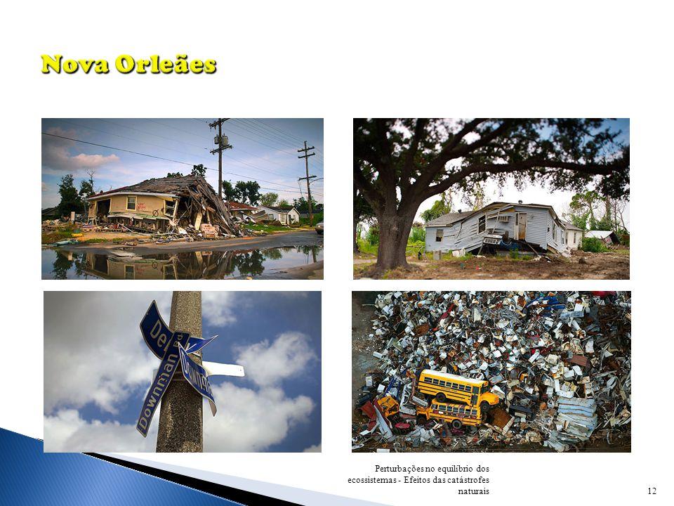 12 Perturbações no equilíbrio dos ecossistemas - Efeitos das catástrofes naturais
