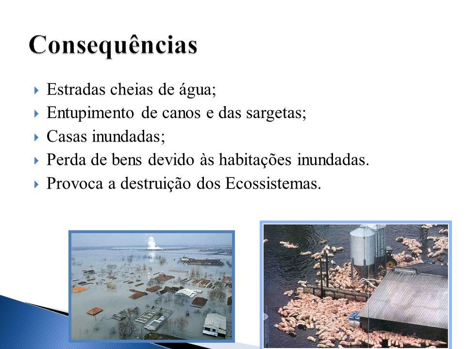Estradas cheias de água; Entupimento de canos e das sargetas; Casas inundadas; Perda de bens devido às habitações inundadas. Provoca a destruição dos
