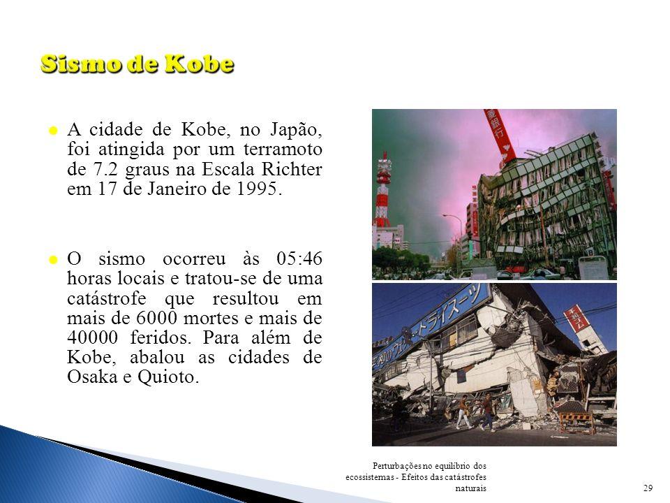 29 Perturbações no equilíbrio dos ecossistemas - Efeitos das catástrofes naturais A cidade de Kobe, no Japão, foi atingida por um terramoto de 7.2 gra