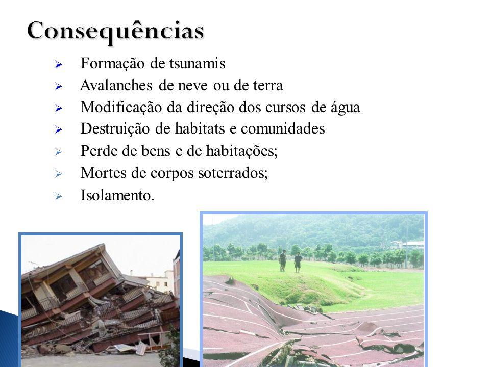Formação de tsunamis Avalanches de neve ou de terra Modificação da direção dos cursos de água Destruição de habitats e comunidades Perde de bens e de