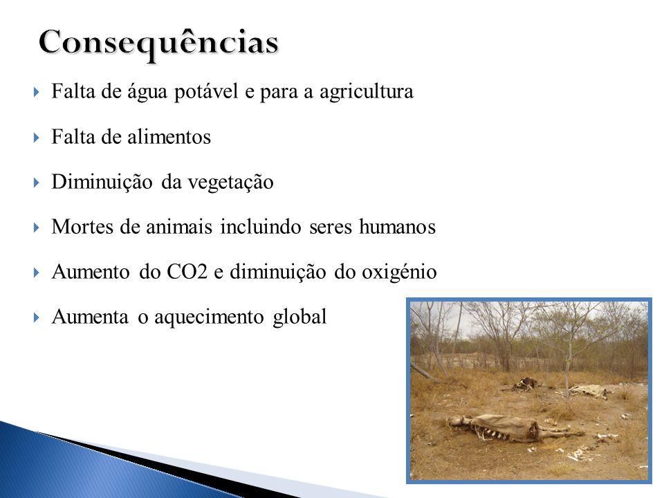 Falta de água potável e para a agricultura Falta de alimentos Diminuição da vegetação Mortes de animais incluindo seres humanos Aumento do CO2 e dimin