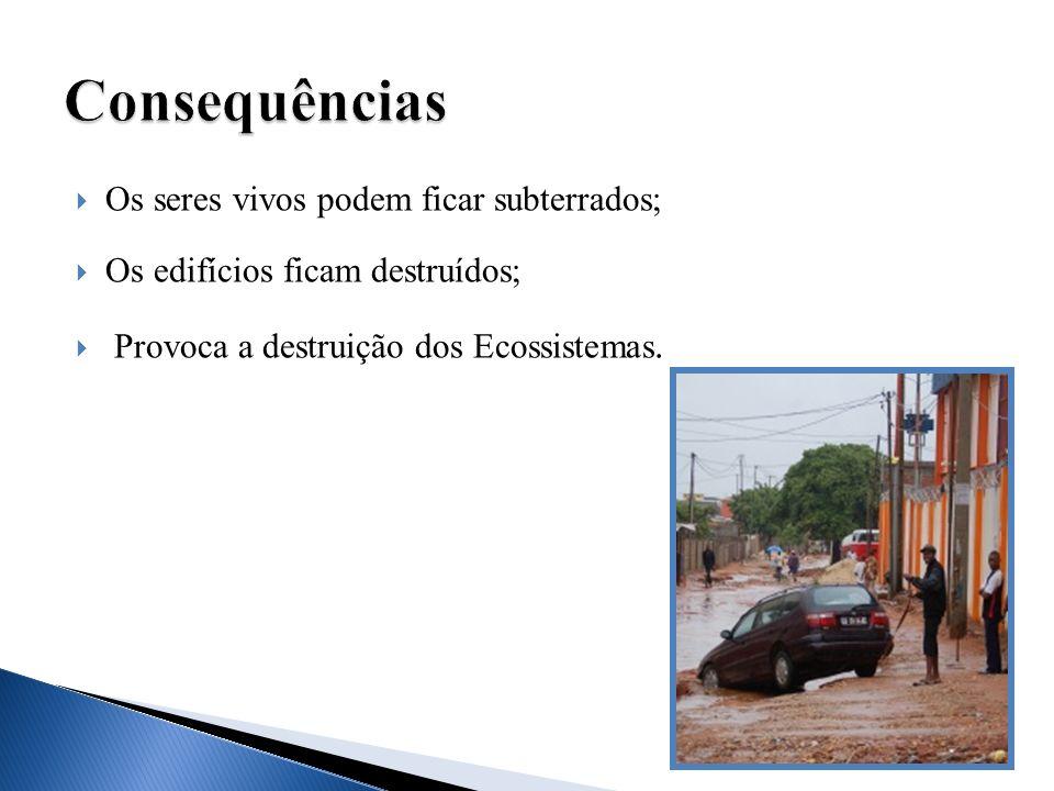 Os seres vivos podem ficar subterrados; Os edifícios ficam destruídos; Provoca a destruição dos Ecossistemas.