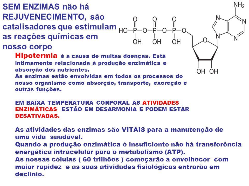 SEM ENZIMAS não há REJUVENECIMENTO, são catalisadores que estimulam as reações químicas em nosso corpo Hipotermia é a causa de muitas doenças. Está in