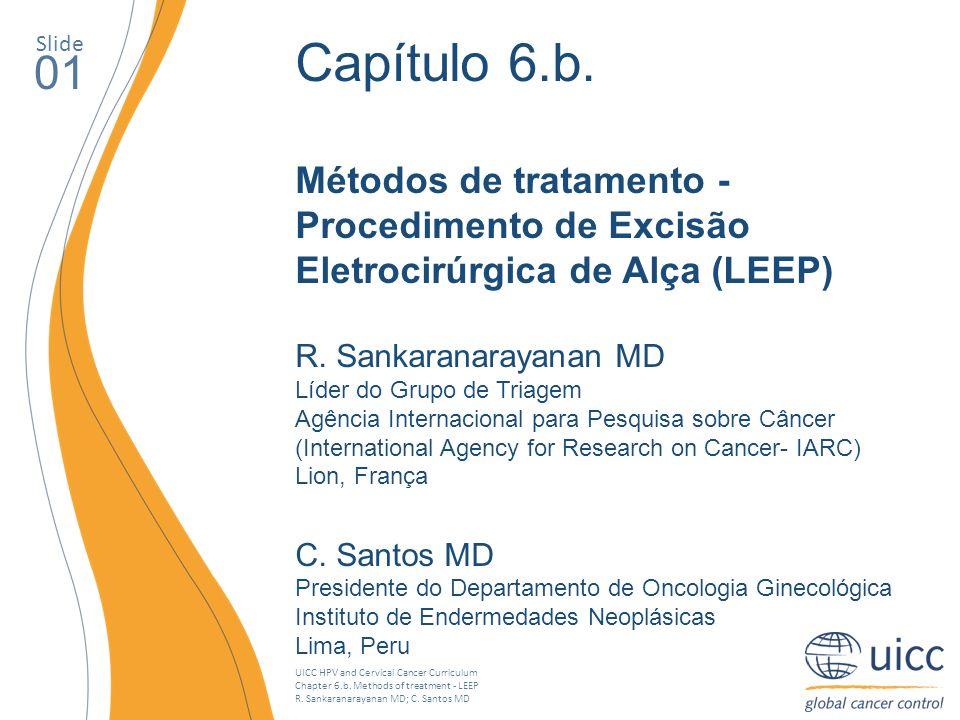 UICC HPV and Cervical Cancer Curriculum Chapter 6.b. Methods of treatment - LEEP R. Sankaranarayanan MD; C. Santos MD Slide 01 Capítulo 6.b. Métodos d
