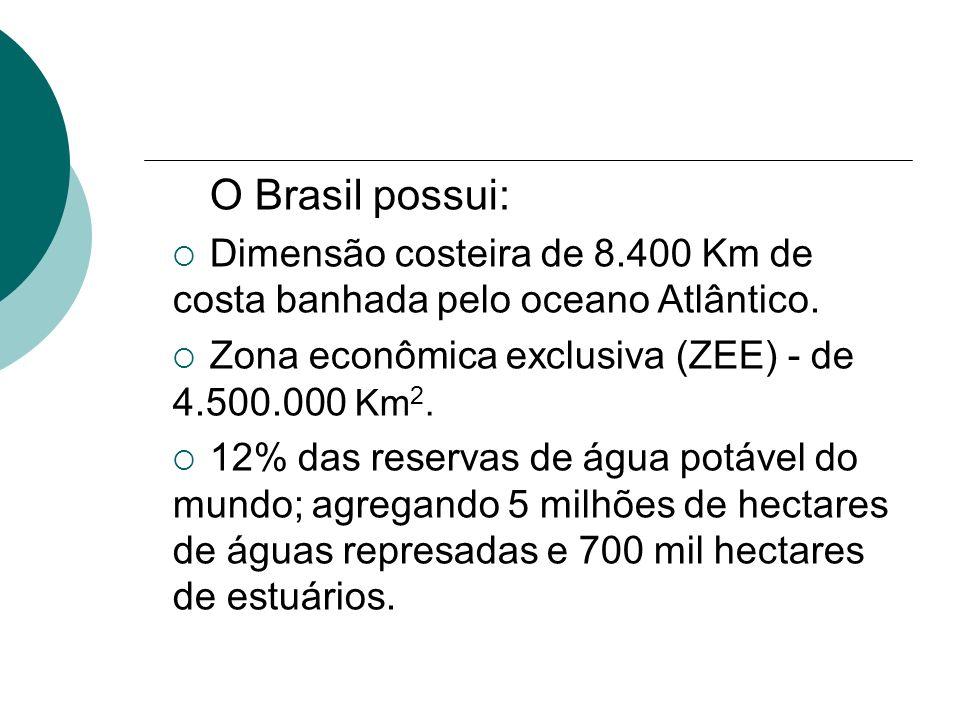 O Brasil possui: Dimensão costeira de 8.400 Km de costa banhada pelo oceano Atlântico. Zona econômica exclusiva (ZEE) - de 4.500.000 Km 2. 12% das res