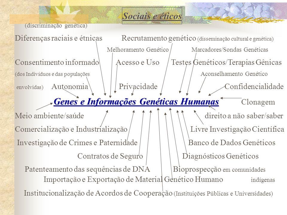 (discriminação genética) Diferenças raciais e étnicas Recrutamento genético (disseminação cultural e genética) Melhoramento Genético Marcadores/Sondas