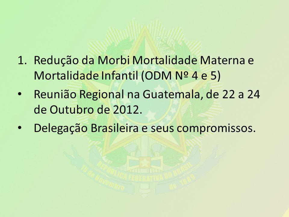 1.Redução da Morbi Mortalidade Materna e Mortalidade Infantil (ODM Nº 4 e 5) Reunião Regional na Guatemala, de 22 a 24 de Outubro de 2012. Delegação B