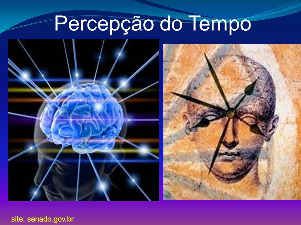 Site: educarede.org.br HISTÓRIA