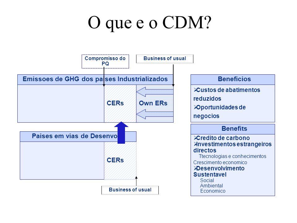 O que e o CDM? CERsOwn ERs CERs Custos de abatimentos reduzidos Oportunidades de negocios Credito de carbono Investimentos estrangeiros directos Ttecn