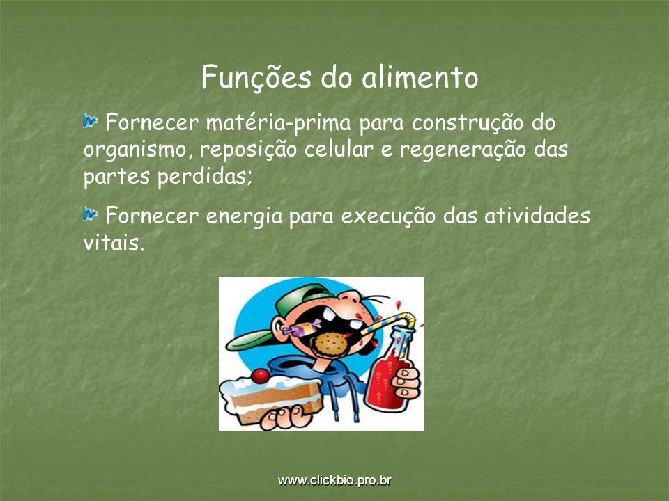 www.clickbio.pro.br Funções do alimento Fornecer matéria-prima para construção do organismo, reposição celular e regeneração das partes perdidas; Forn