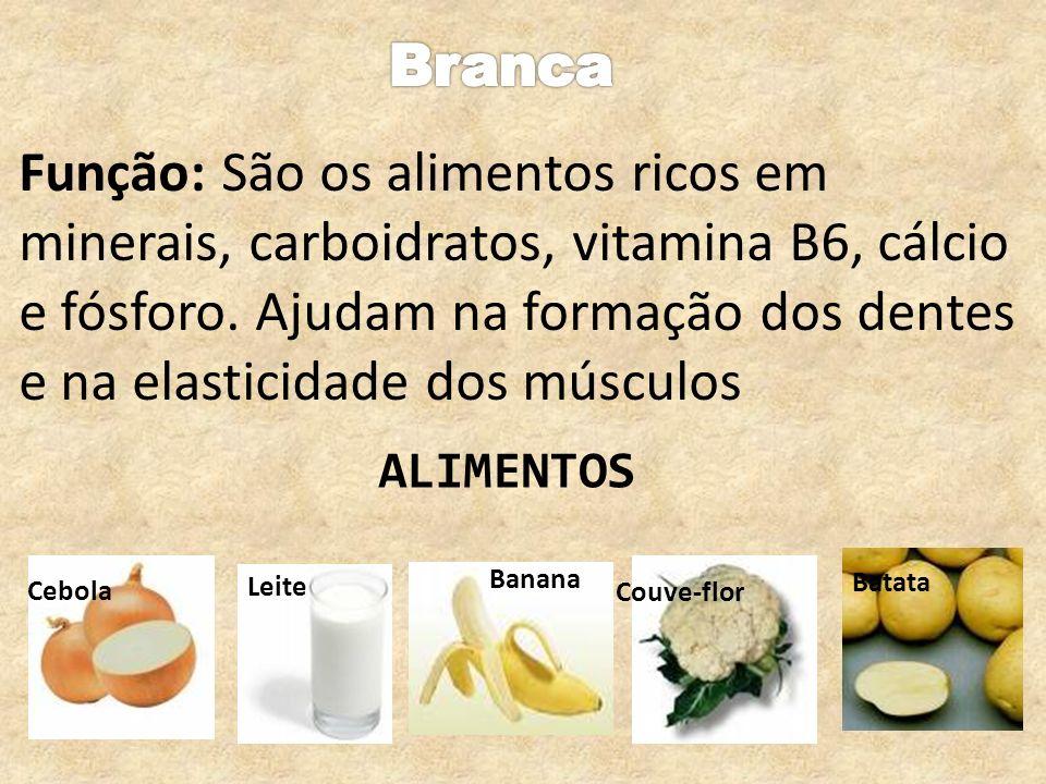 Função: São os alimentos ricos em minerais, carboidratos, vitamina B6, cálcio e fósforo. Ajudam na formação dos dentes e na elasticidade dos músculos