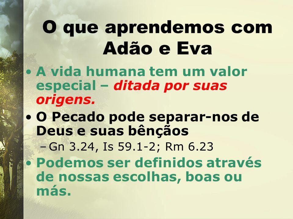 O que aprendemos com Adão e Eva A vida humana tem um valor especial – ditada por suas origens. O Pecado pode separar-nos de Deus e suas bênçãos –Gn 3.