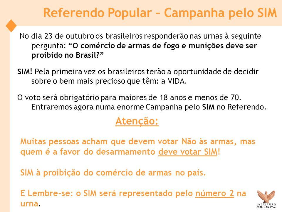No dia 23 de outubro os brasileiros responderão nas urnas à seguinte pergunta: O comércio de armas de fogo e munições deve ser proibido no Brasil? SIM