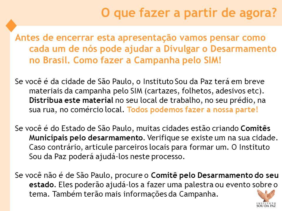 Antes de encerrar esta apresentação vamos pensar como cada um de nós pode ajudar a Divulgar o Desarmamento no Brasil. Como fazer a Campanha pelo SIM!