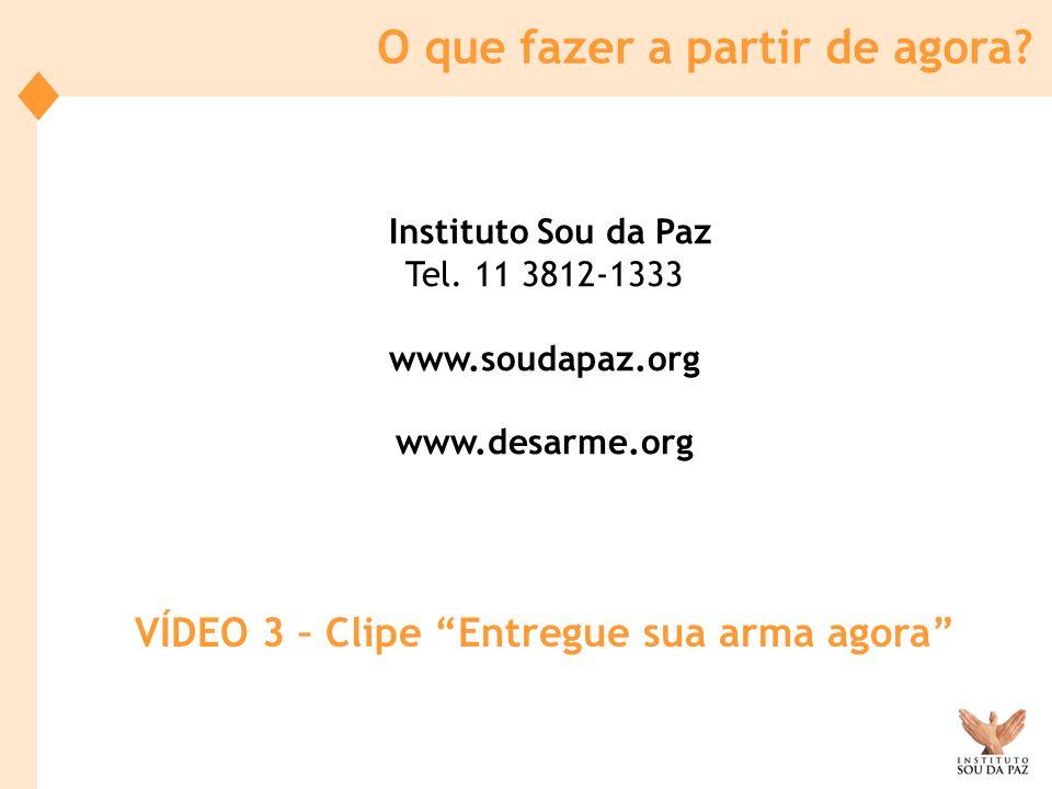 Instituto Sou da Paz Tel. 11 3812-1333 www.soudapaz.org www.desarme.org O que fazer a partir de agora? VÍDEO 3 – Clipe Entregue sua arma agora