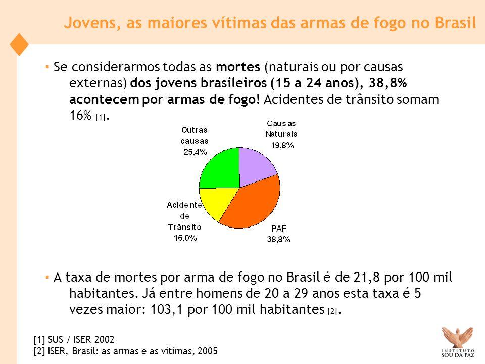 Jovens, as maiores vítimas das armas de fogo no Brasil Se considerarmos todas as mortes (naturais ou por causas externas) dos jovens brasileiros (15 a