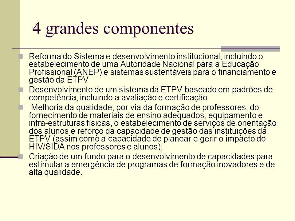 4 grandes componentes Reforma do Sistema e desenvolvimento institucional, incluindo o estabelecimento de uma Autoridade Nacional para a Educação Profi