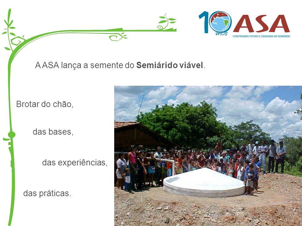 A ASA lança a semente do Semiárido viável. Brotar do chão, das bases, das experiências, das práticas.