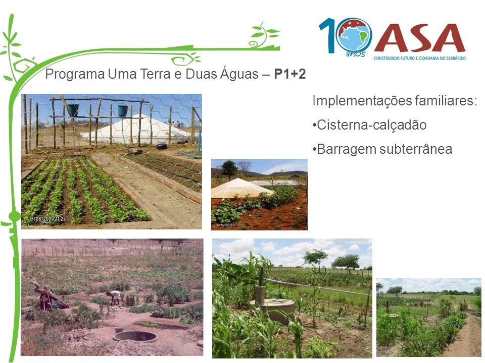 Programa Uma Terra e Duas Águas – P1+2 Implementações familiares: Cisterna-calçadão Barragem subterrânea