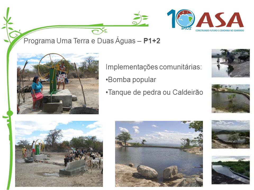 Programa Uma Terra e Duas Águas – P1+2 Implementações comunitárias: Bomba popular Tanque de pedra ou Caldeirão