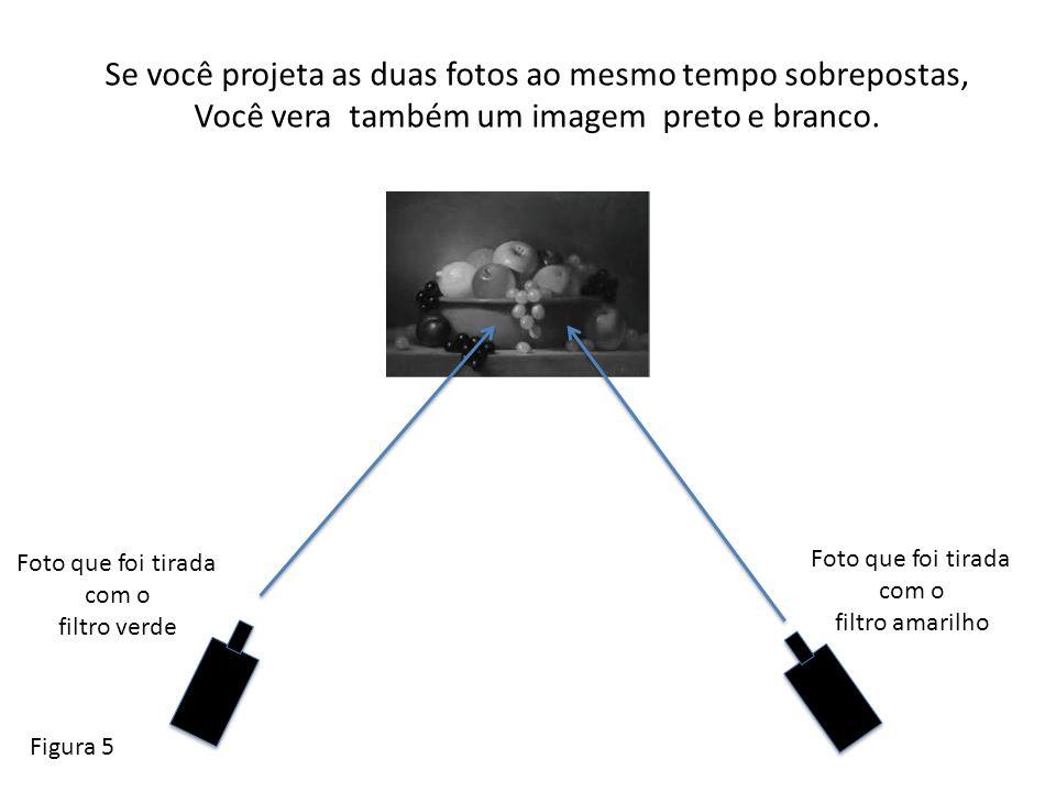 Se você projeta as duas fotos ao mesmo tempo sobrepostas, Você vera também um imagem preto e branco. Figura 5 Foto que foi tirada com o filtro verde F