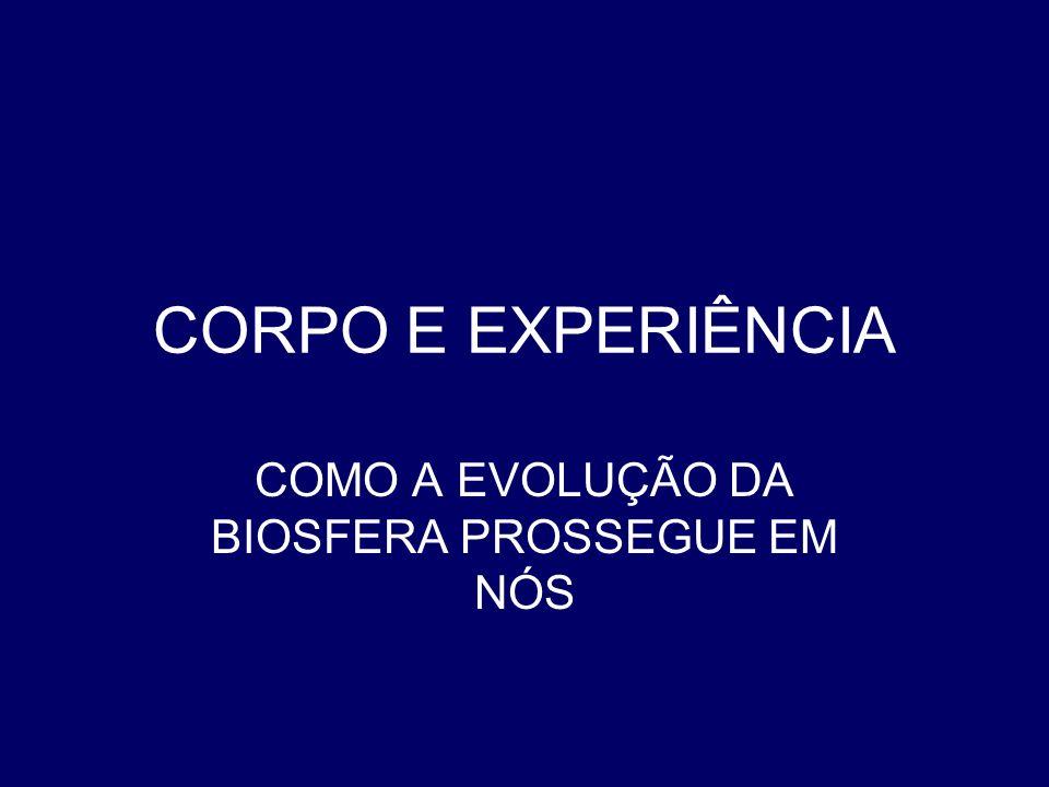CORPO E EXPERIÊNCIA COMO A EVOLUÇÃO DA BIOSFERA PROSSEGUE EM NÓS