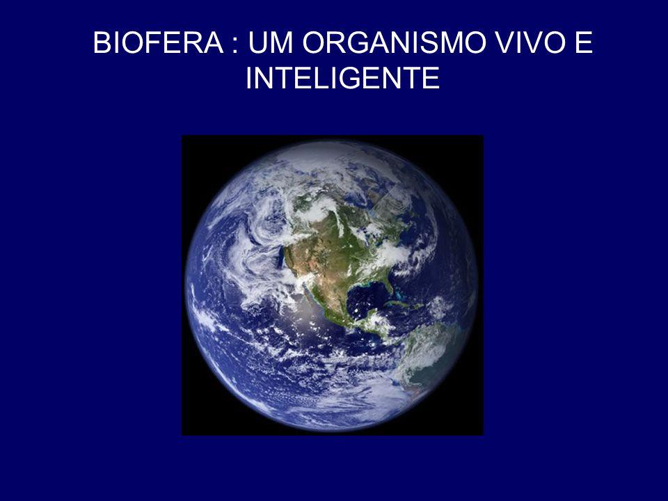 BIOFERA : UM ORGANISMO VIVO E INTELIGENTE