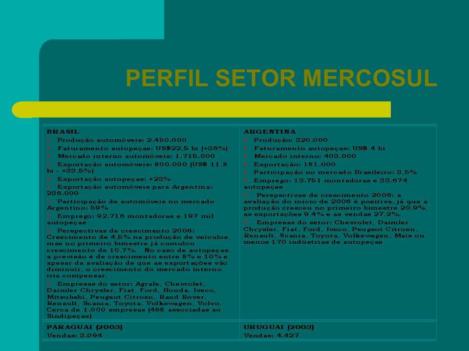 PERFIL SETOR MERCOSUL