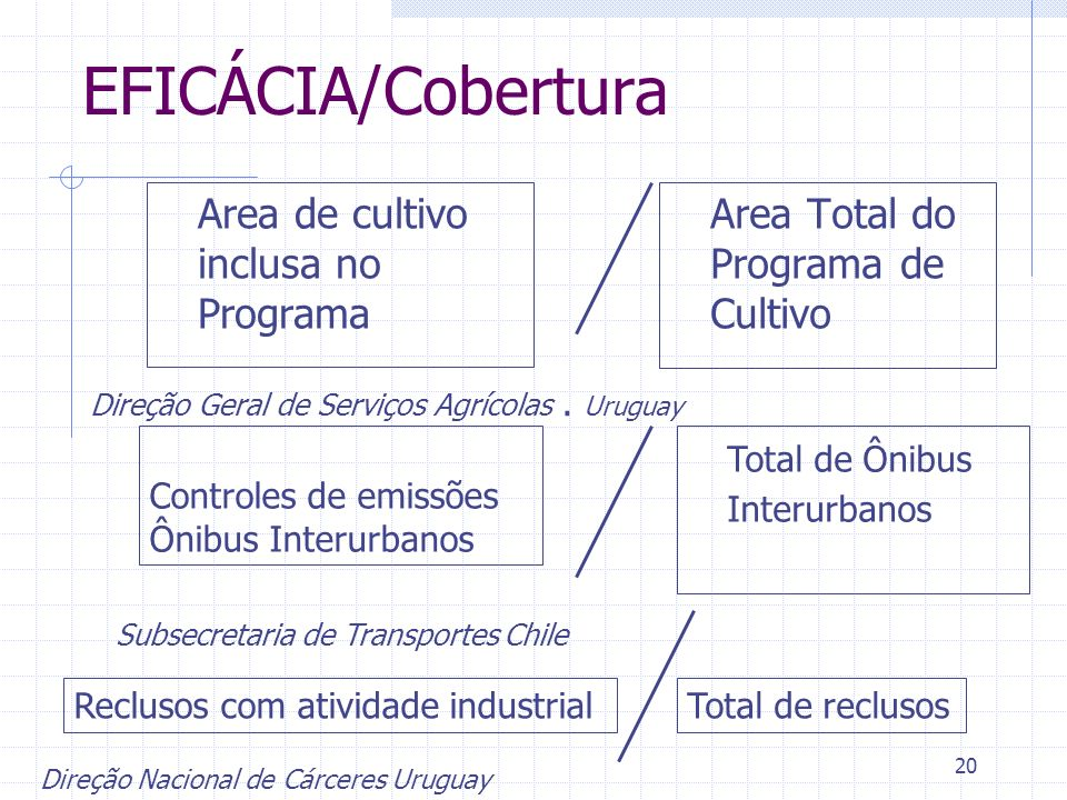 20 EFICÁCIA/Cobertura Area de cultivo inclusa no Programa Area Total do Programa de Cultivo Direção Geral de Serviços Agrícolas. Uruguay Controles de