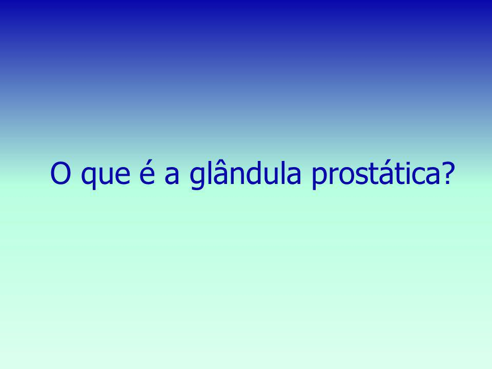 O que é a glândula prostática?