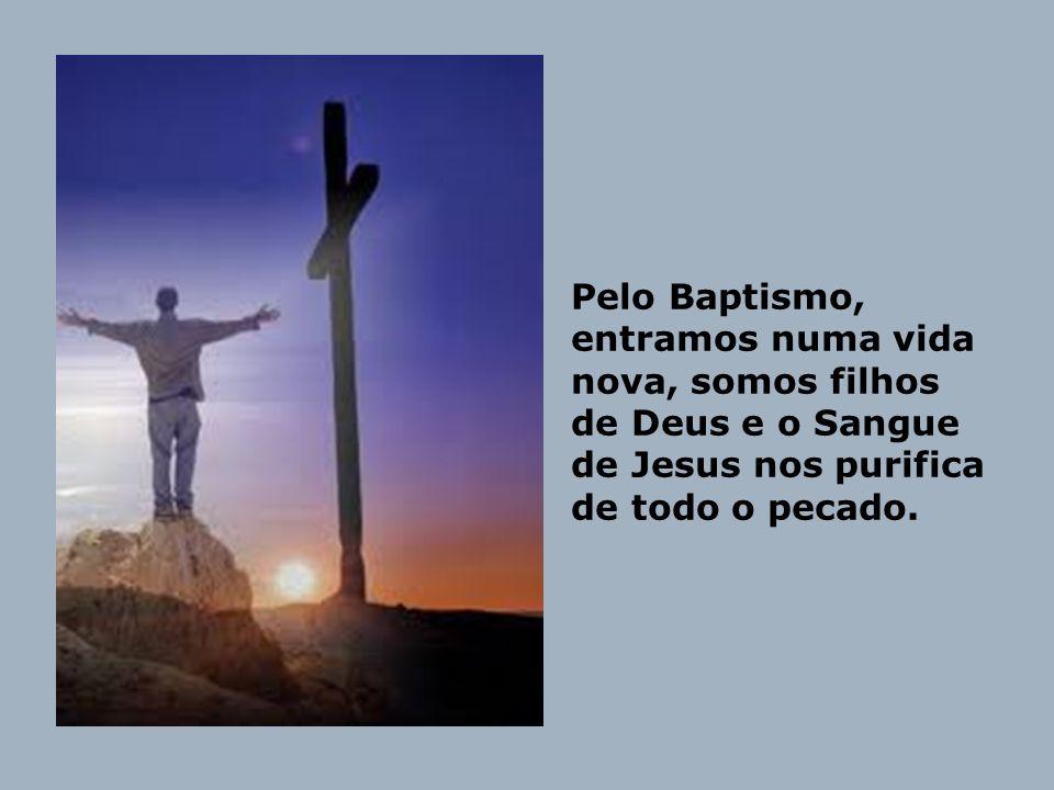 Pelo Baptismo, entramos numa vida nova, somos filhos de Deus e o Sangue de Jesus nos purifica de todo o pecado.