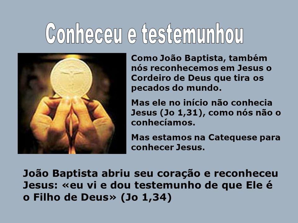 Como João Baptista, também nós reconhecemos em Jesus o Cordeiro de Deus que tira os pecados do mundo. Mas ele no início não conhecia Jesus (Jo 1,31),