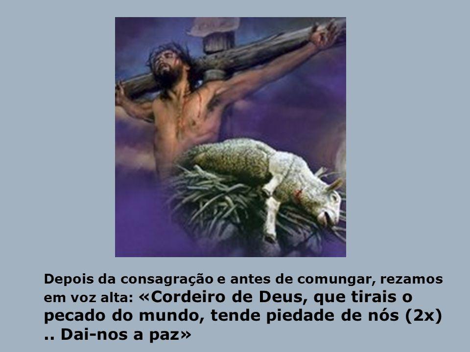 O cordeiro pascal de Israel é um sinal de Deus que prepara a vinda do Verdadeiro Cordeiro, Jesus.