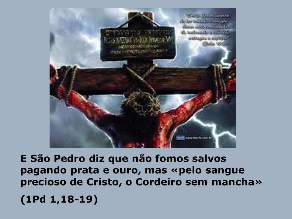 João Baptista, quando apresenta Jesus, como o Cordeiro de Deus quer dizer que Ele veio para dar a Sua vida para nós.