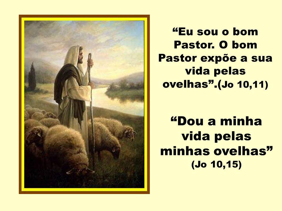 Eu sou o bom Pastor.