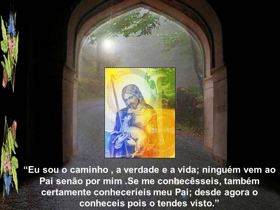 Eu sou o caminho, a verdade e a vida; ninguém vem ao Pai senão por mim.Se me conhecêsseis, também certamente conheceríeis meu Pai; desde agora o conheceis pois o tendes visto.