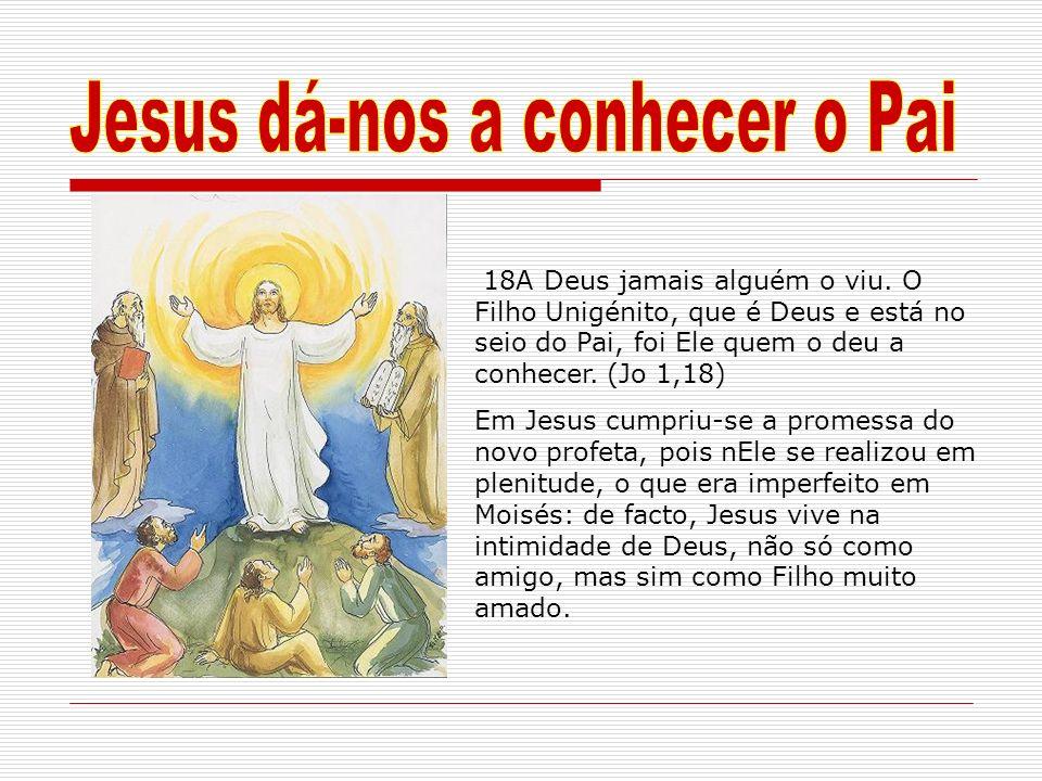 18A Deus jamais alguém o viu. O Filho Unigénito, que é Deus e está no seio do Pai, foi Ele quem o deu a conhecer. (Jo 1,18) Em Jesus cumpriu-se a prom