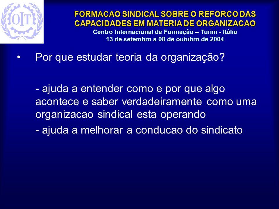 FORMACAO SINDICAL SOBRE O REFORCO DAS CAPACIDADES EM MATERIA DE ORGANIZACAO Centro Internacional de Formação – Turim - Itália 13 de setembro a 08 de outubro de 2004 Em que este curso ajudara suas organizações sindicais e como.