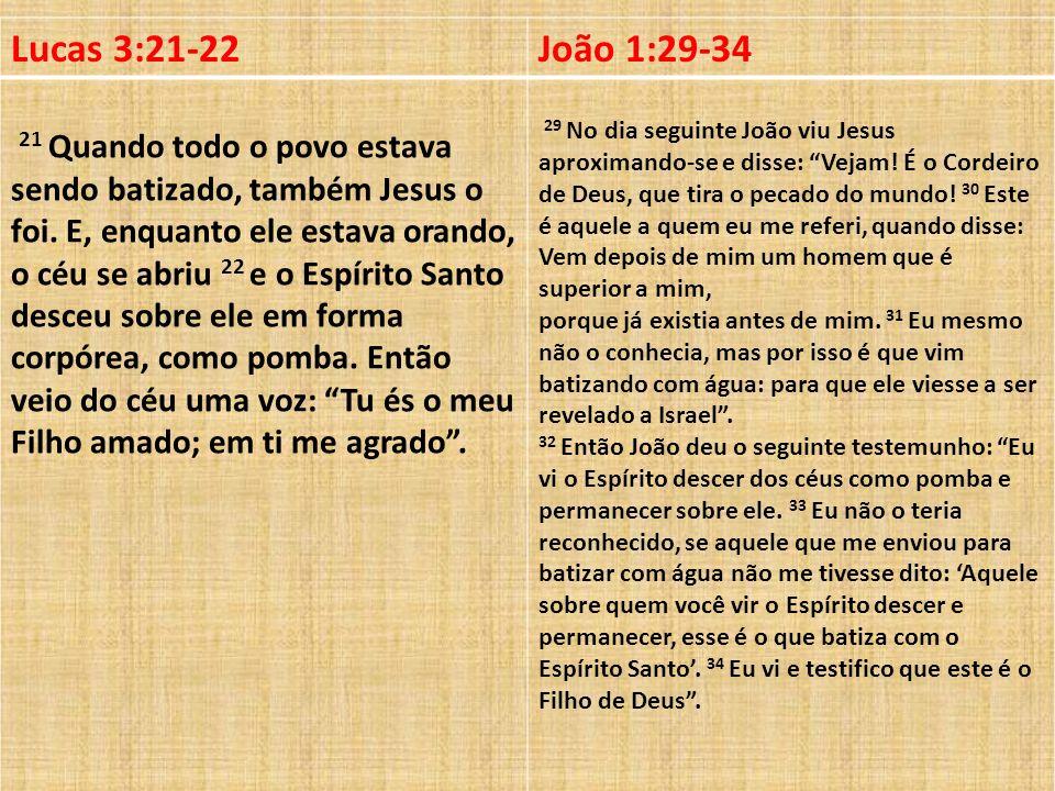 Lucas 3:21-22João 1:29-34 21 Quando todo o povo estava sendo batizado, também Jesus o foi. E, enquanto ele estava orando, o céu se abriu 22 e o Espíri