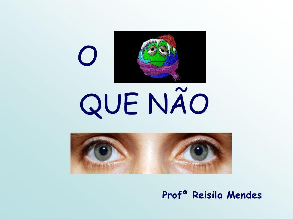 O QUE NÃO Profª Reisila Mendes