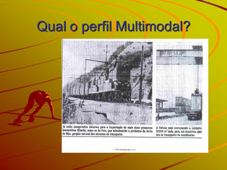Qual o perfil Multimodal?