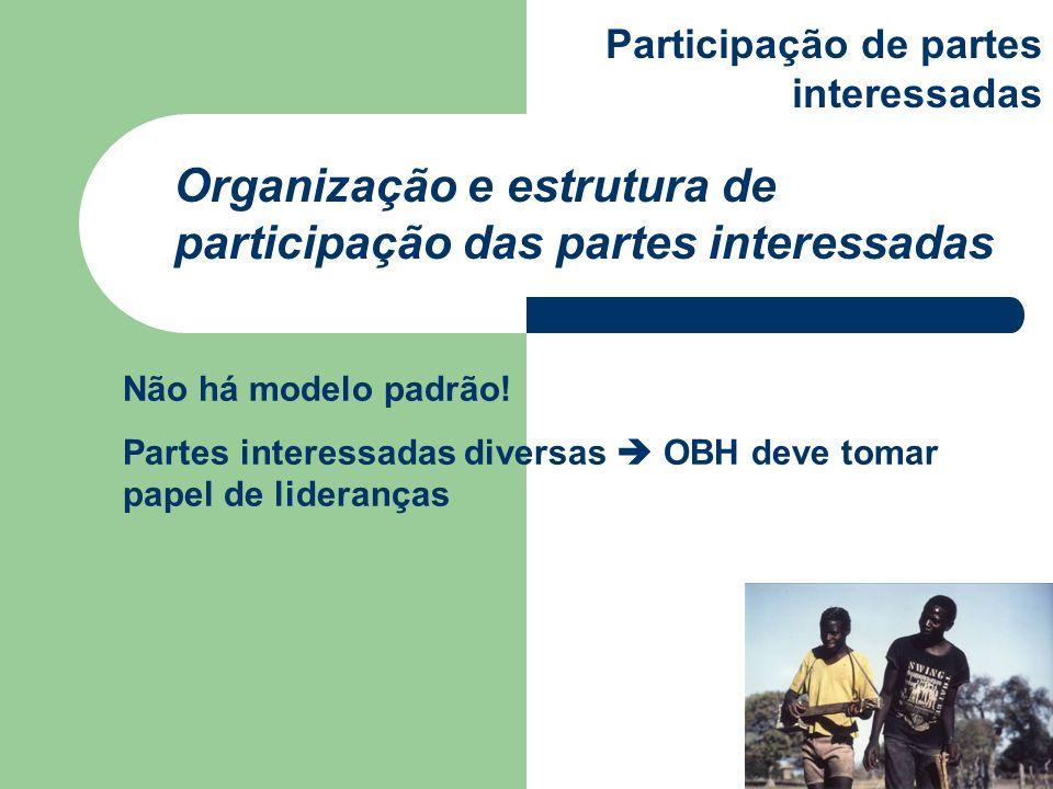 Não há modelo padrão! Partes interessadas diversas OBH deve tomar papel de lideranças Organização e estrutura de participação das partes interessadas