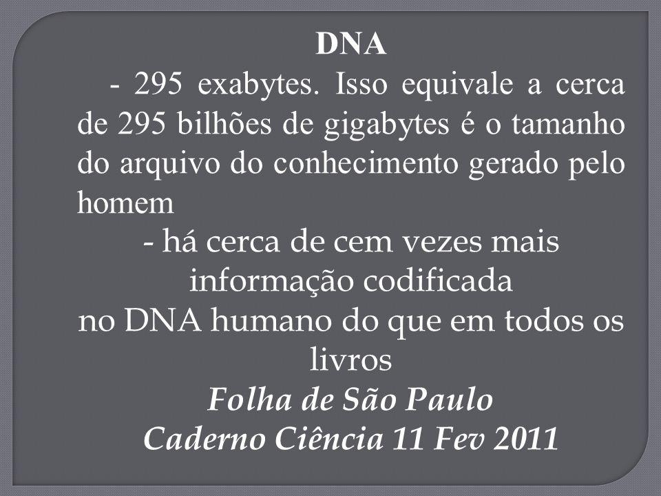 DNA - 295 exabytes. Isso equivale a cerca de 295 bilhões de gigabytes é o tamanho do arquivo do conhecimento gerado pelo homem - há cerca de cem vezes