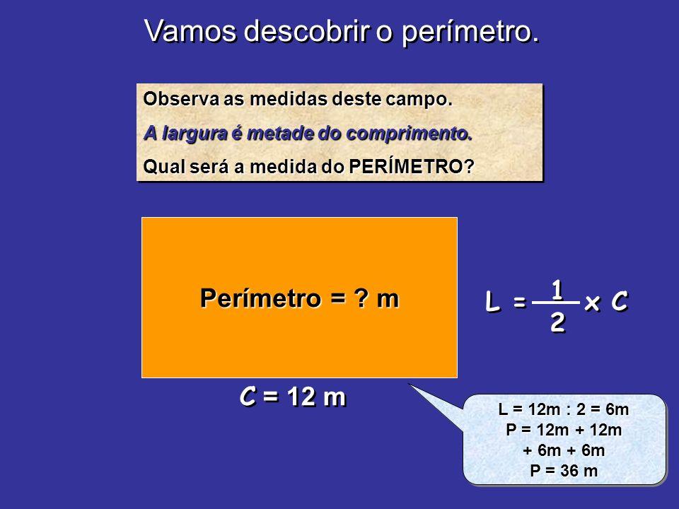 Vamos descobrir o perímetro. Observa as medidas deste campo. A largura é metade do comprimento. Qual será a medida do PERÍMETRO? Observa as medidas de