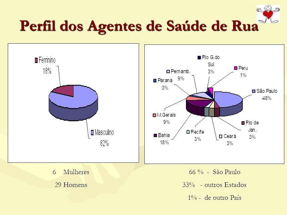 Perfil dos Agentes de Saúde de Rua 6Mulheres 29 Homens 66 % - São Paulo 33% - outros Estados 1% - de outro País